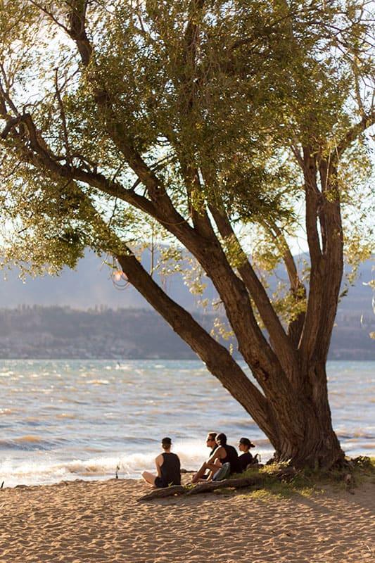 Rotary Beach Kelowna sunset beach shot of three family members sitting together besides a massive tree